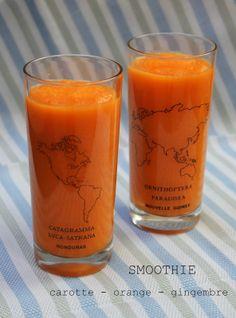 Diana's Cook Blog: Smoothie carotte-orange-gingembre