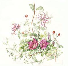 Recent werk - Janneke Brinkman - Salentijn