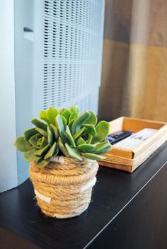 succulent in jute rope planter on media console