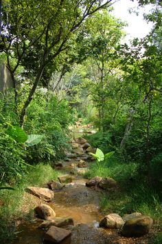 I suggest extra info on Acreage Landscaping Ideas - Helen Pond Design, Garden Design, Acreage Landscaping, Landscaping Ideas, Garden Stream, Garden Ponds, Building A Pond, Natural Pond, Backyard Water Feature