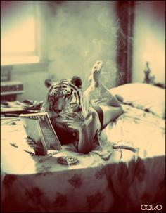 smoking tiger