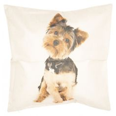 Textil párnahuzat 43x43cm Textiles, Standard Textile, Marlow, Scatter Cushions, Cushion Pads, Indoor Air Quality, Bird Feathers, Accent Decor, Cover