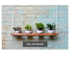 1 Tier Hanging Indoor Wall Planter by PinOakProjects on Etsy