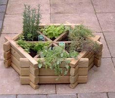 Herb Garden with Hexagonal Compartment Design