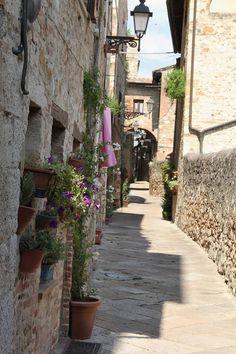 Colle di Val d'Elsa , Siena , Italy