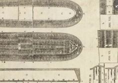 Diagram showing how African slaves were shackled in the slave ship s hold.