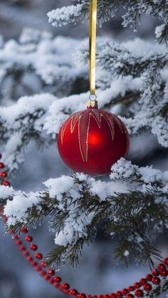 Imagem de christmas, snow, and christmas tree Christmas Tree Themes, Christmas Scenes, Noel Christmas, Merry Little Christmas, Christmas Pictures, All Things Christmas, Winter Christmas, Xmas, Christmas Ornaments