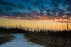 pass a grille beach - Google Search