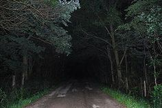 Werewolf Hollow.  If you drive down the lane at Werewolf Hollow, Shelby County Indiana: there is a stop sign. Look close and you will see blood flowing on it. As you go on, there are cornfields. You can see a male ghost. Be careful not to stop your car because he will scratch your car. He is trying to warn you not to go on. There are some abandoned houses and if you get out of your car and go up to the houses, you can see a ghost in one window. In another window, you hear noises.