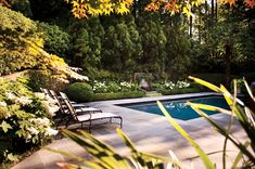 private haven by landscape designer Alex Smith