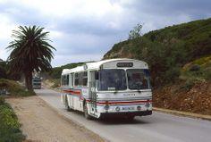 Elderly Portuguese Scania