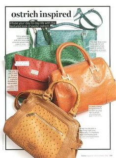 We love how LouLou Magazine puts the ostrich trend on display by picking out the season's most colourful finds. Our ostrich is the one in emerald-green. The Ostrich, Rainbow, Bags, Inspiration, Purses, Biblical Inspiration, Rainbows, Rain Bow, Taschen