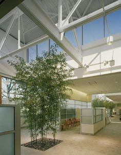 The original light monitors of a 1940 factory were reglazed to bring daylight indoors, allowing plantings to grow out of the floor at the North Shore LIJ Cancer Institute. Photo: Barry Halkin, Halkin Photography LLC.