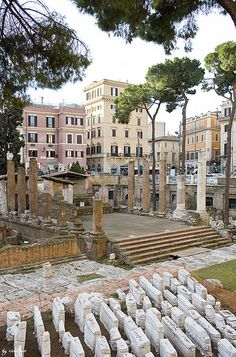 Rome, Italy--Believed to be the Forum where Julius Caesar was killed