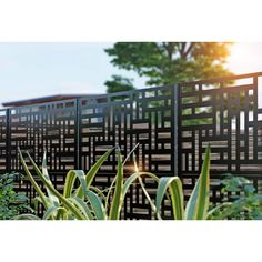 H x 2 ft. W Screen Series Metal Privacy Screen Decorative Fence Panels, Metal Fence Panels, Metal Screen, Metal Garden Fencing, Outdoor Fencing, Backyard Fences, Backyard Landscaping, Ficus, Privacy Screen Outdoor