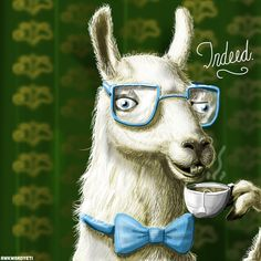 The Fancy Llama