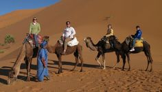 #LuxuryMoroccoTourCompany gives more experience about camel trekking. Check out more @ http://www.camelsafaries.net/aboutus.html