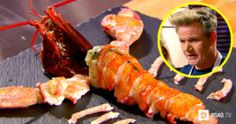 'Gordon Ramsay' Extracts Every Ounce Of Lobster Out Of Its Shell During MasterChef! Gordon Ramsay Shows, Gordon Ramsey, Like A Boss, Tandoori Chicken, Gluten Free Recipes, Free Food, Sushi, Seafood, Shell