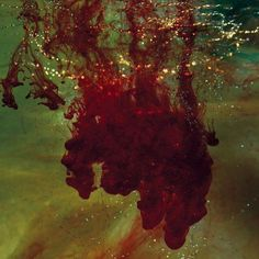 2014 release from the Indie Rock band. Voluntarily adhering to a more stripped-down approach to production, the band nonetheless retain the sonic density of their previous releases.WHEN SHAPES OF SPIL
