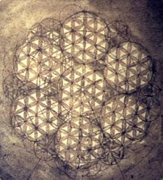 Flower of Life ( Fleur de Vie ) from the journal of Leonardo da Vinci