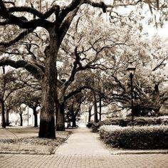 Savannah. Georgia.