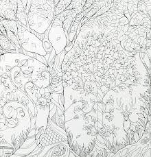 Resultado de imagem para livros para colorir adultos