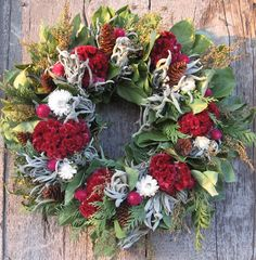 Furniture and Accessories. Lovely Colorful Christmas Front Door Decorating Wreaths in Fresh Red White and Green Colors with Amazing Brown Pop-Ups from Pinecones. Lovely Warm Welcome Decorative Christmas Wreaths