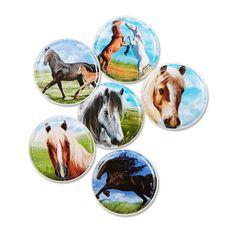 Auf dem Rücken der Pferde liegt das Glück dieser Erde – und auf dem Rücken der Kids kletten bald Pferde-Kletties mit tollen Motiven.