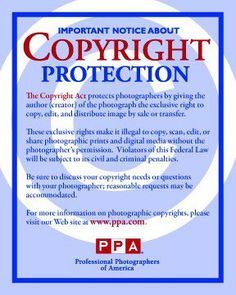32 Best Intellectual property images  cfa8bc2f7aa