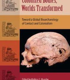 Bioarchaeology of East Asia: Movement, Contact, Health