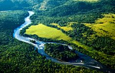 Brasil: Mata Atlântica / Atlantic Forest - The Eye of the Water