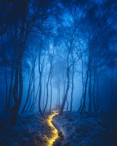 Fairy Path by James Mills - Photo 140700811 - 500px