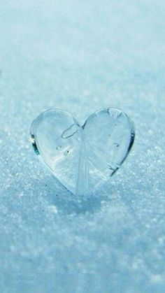 Heart Wallpaper Hd, Cute Images For Dp, Amazing Dp, Blue Palette, Heart With Wings, Winter's Tale, Winter Is Here, Cthulhu, Nature Photos