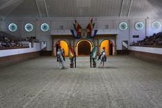Fundacion Real Escuela Andaluza del Arte Ecuestre, Doma Clásica, Paso A Dos 001.jpg