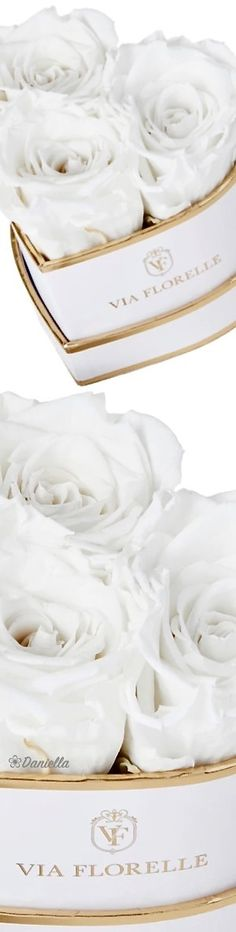 Send roses to someone in the United States, or have flowers delivered in Los Angeles. Pearl White, White Lace, White Gold, Send Roses, Flowers Delivered, Pin Logo, Shades Of Gold, Happy Memorial Day, White Style