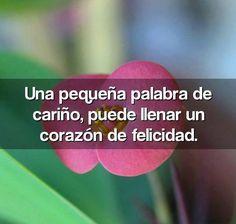 frases hermosas | Una pequeña palabra de cariño, puede llenar un corazón de felicidad ...
