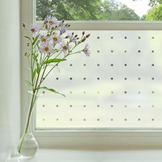 Contemporary window film via purlfrost.com