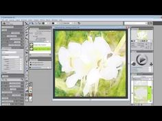Painter Master Skip Allen answers your questions: Advance Auto-Painting With Watercolor.