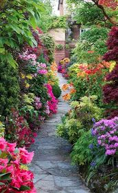 7 Limitless Tips: Backyard Garden Design Mulches modern backyard garden home.Backyard Garden Landscape How To Build tiny backyard garden fire pits. Beautiful Gardens, Beautiful Flowers, Beautiful Places, Beautiful Gorgeous, Beautiful Scenery, Absolutely Stunning, Simply Beautiful, Amazing Gardens, Beautiful Landscapes
