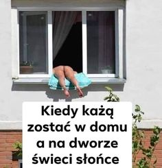 Polish Memes, Jokes, Lol, In This Moment, Politics, Funny, Outdoor, Frases, Funny Memes