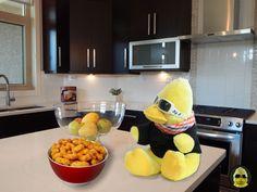 Ich weiß gar nicht, was die Leute immer gegen #Würmer haben. Die schmecken doch richtig gut. 😎😎 #ibes #ibes2019  #bigb #bigbird #cooler #gelber #erpel #enterich #vogel #gelbe #ente #schrader #beckum #yellow #duck #bird #plüschi #plushie #plüschtier #kuscheltier #stofftier #schmusetier #fotografier_dein_kuscheltier Bird