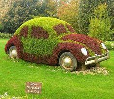 Car in Garden