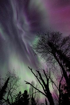 """AURORA 6895  """"The meeting of Earth and Sky""""  Northern Lights on April 24, 2012"""