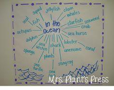 In the ocean Under The Ocean, Under The Sea Theme, Sea And Ocean, Oliver Jeffers, Ocean Lesson Plans, Ocean Zones, Anchor Charts First Grade, Ocean Habitat, Ocean Activities