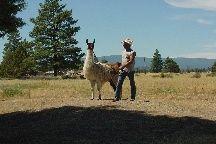 Annie Bugs with dad www.riverdancefarm.com or www.facebook.com/riverdancefarm