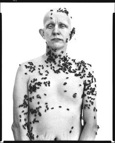 Ronald Fischer, beekeeper, Davis, California, May 9, 1981, Avedon:  This stunning portrait shows a beekeeper from California and exhibits Avedon's uncanny ability to capture his subjects in their most intimate light.  The man is covered in bees, yet he his mood could only be described as serene and disinterested.  The message of the photo seems to be that when you face your fears enough, eventually your fears become the norm.