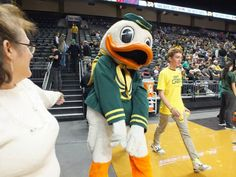 Who else??  THE OREGON DUCK  no longer called Puddles.. (sorry he will always be Puddles to me)