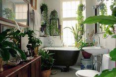 baños con autentños con autenticos jardines dentro