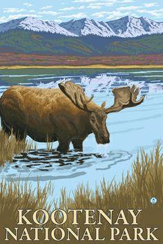 Moose in Lake - Lantern Press Poster