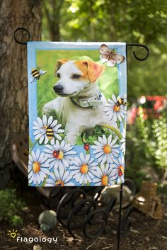 Combine one of our artist designed frames with your pet's photo!